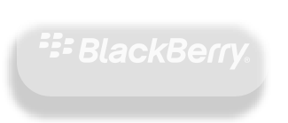 Blackberry company cited Fortune Business Insights